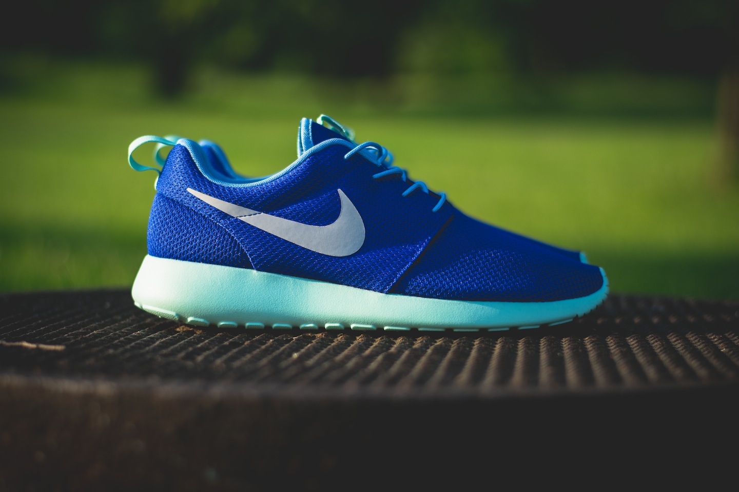 Roshe Run Hommes - Polo Ralph Lauren Chaussures Réduction Ralph Lauren Femmes Chaussures Réduction Coupon
