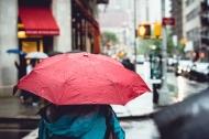 Through The Viewfinder: Rainy SpringDay