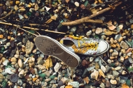 camerasNsneakers: Abandoned Converse LowTop